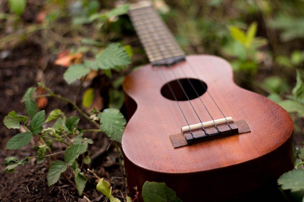 rushina-morrison-329093-unsplash-music-guitare-herbe-verte-green-grass